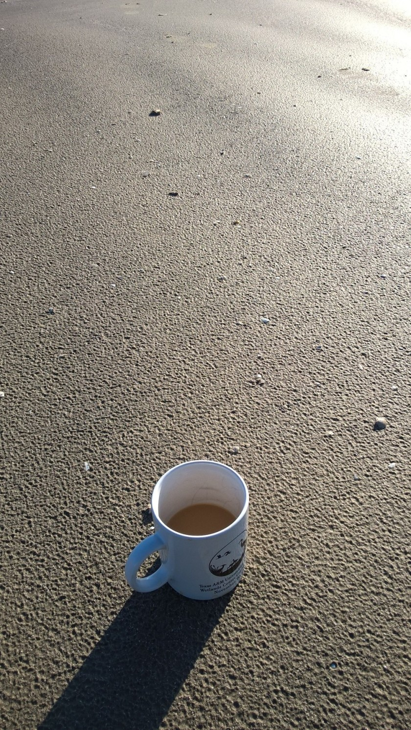 While drinking coffee on the beach!